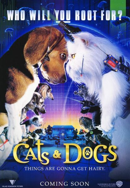 cats_and_dogs_ver31